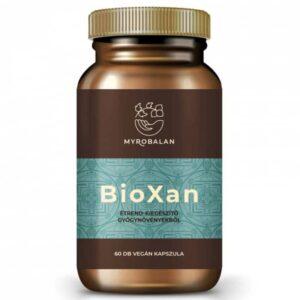 Myrobalan BioXan – kiegyensúlyozó kapszula – 60db